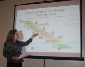 Anatomy of Angel Investor Pitch
